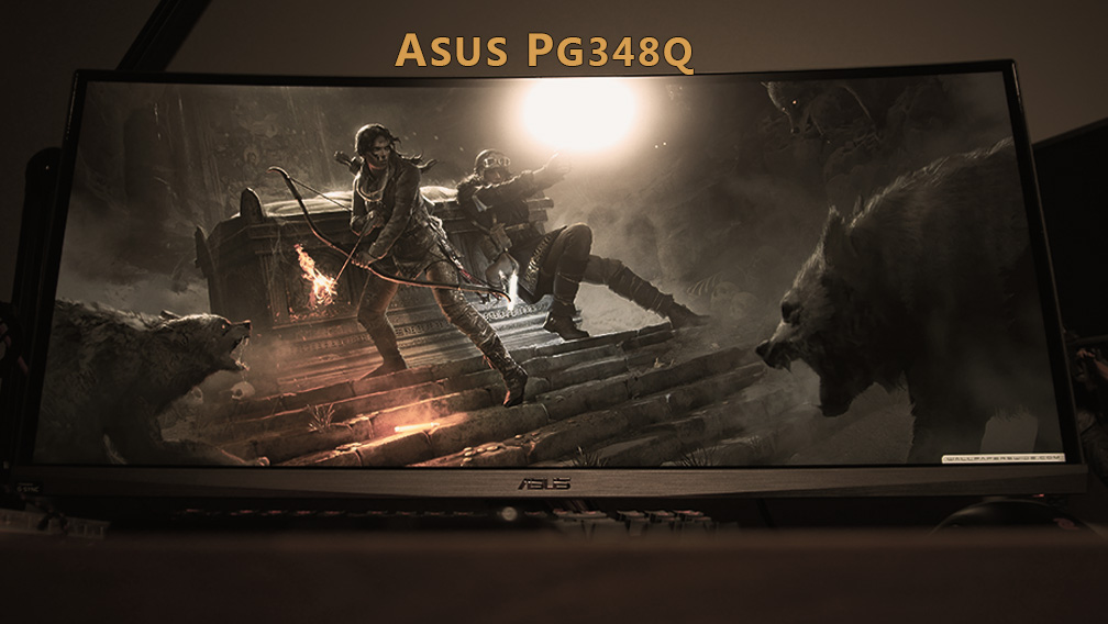 Asus PG348Q Review